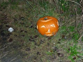 Tradities Halloween.Halloween Leca Landelijk Expertisecentrum Voor Cultuur