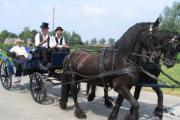 Paardenommegang (Massemen)