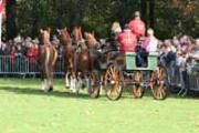 Sint-Hubertusviering (Brasschaat)
