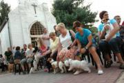 Sint-Rochusfeesten (Zutendaal)