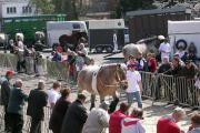 Paaskermis met paardenkeuring (Evergem)