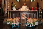Traditiedrager van de maand: Michel Mervilde viert Sint-Antonius